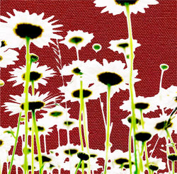 Overexposed.daisies.on.red_3